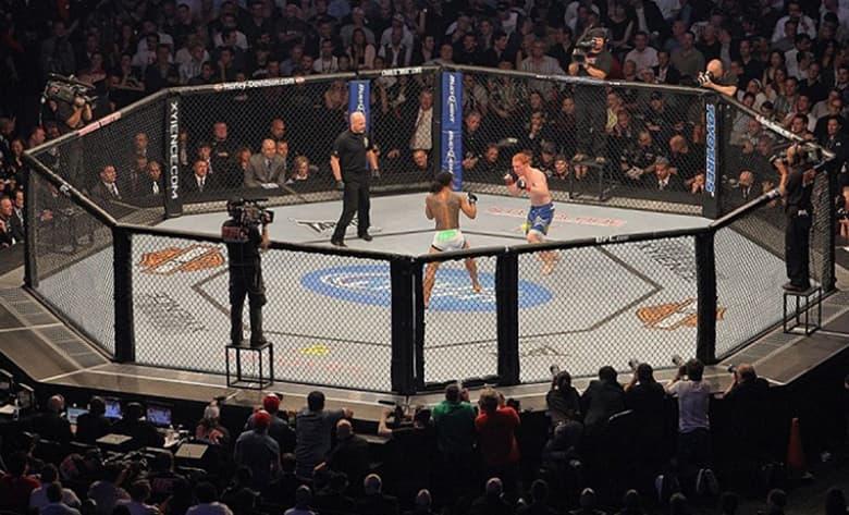 MMA - Octágono / Jaula / Cage