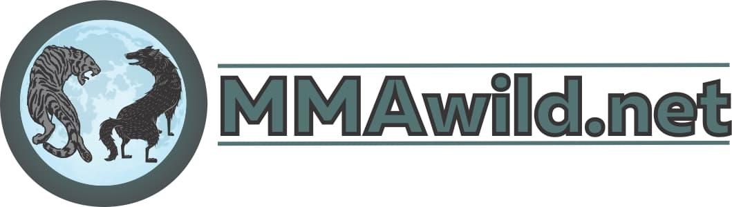 MMA ~ Mixed Martial Arts
